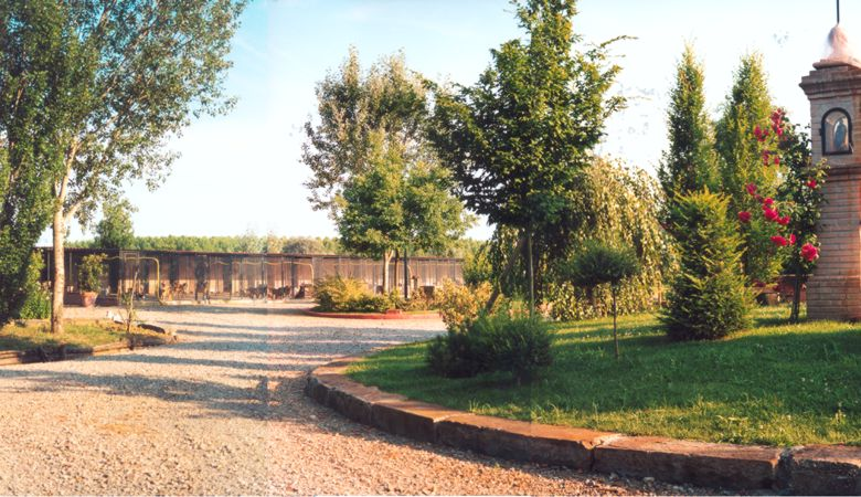 panorama3g